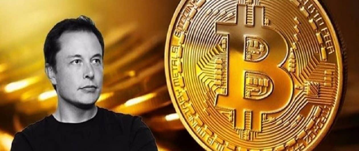 Elon Musk será o próximo a comprar Bitcoin depois do CEO do Twitter?
