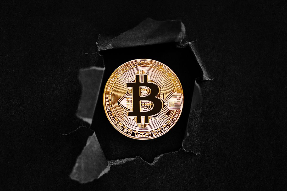 CoinShares na CNBC: Você pode ser demitido se não tiver Bitcoin